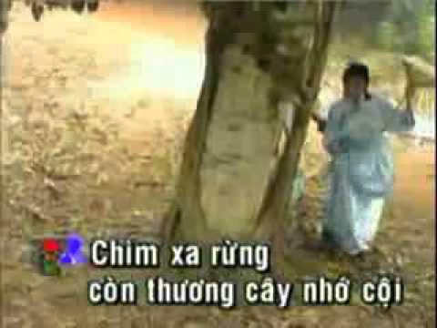 karaoke tanco Trach Nguoi Trong Mong -ca voi 545.flv