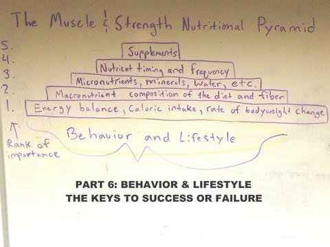 Part 6: Pyramid Overall Theme - Lifestyle & Behavior