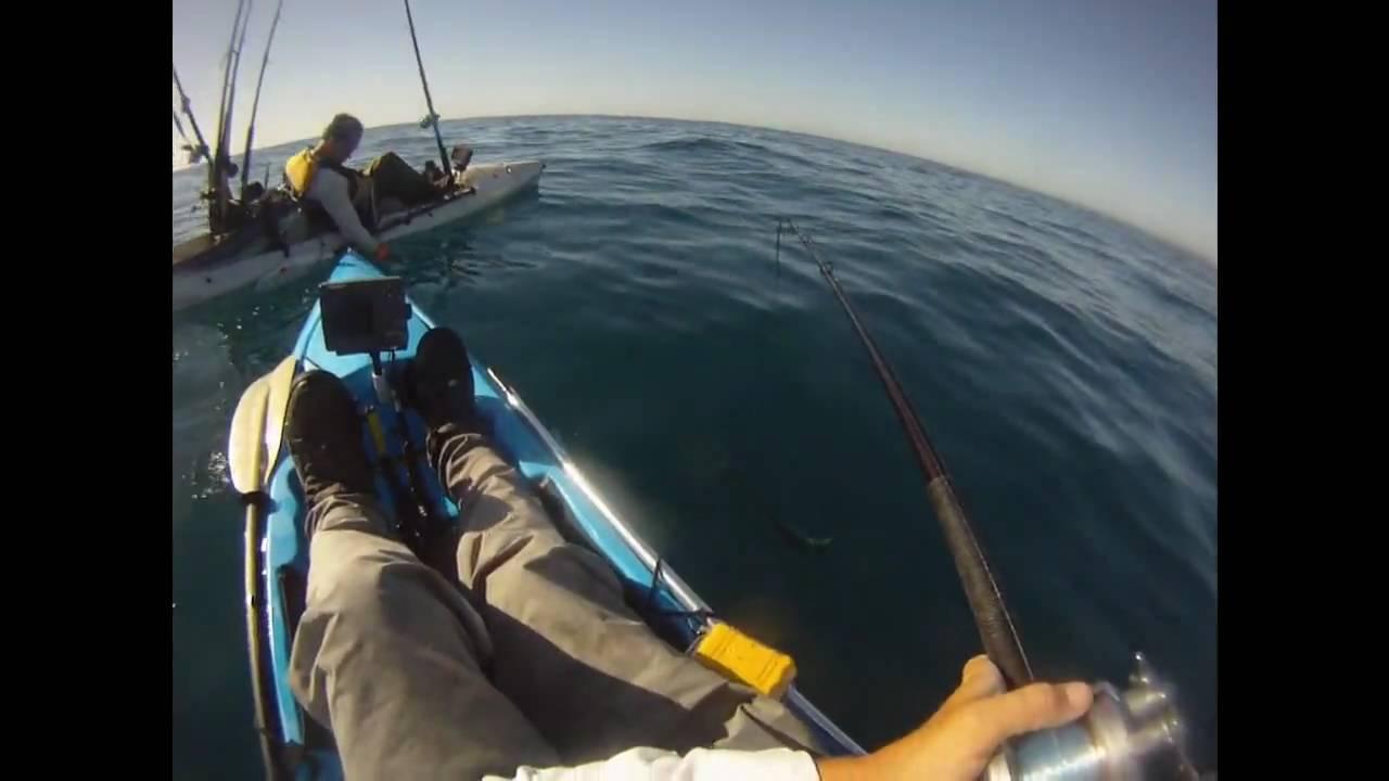 Yellowtail fishing la jolla ca youtube for La jolla fishing