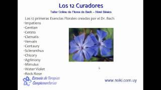 Flores de Bach, nivel básico. Clase  2 (1/7)