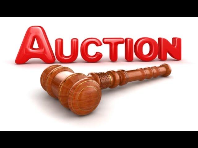 видео том, сайт аукцион для продажи животных область, Приозерский, Лосево