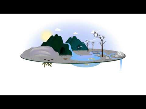 Earth Day 2013 Google Logo (Doodle)