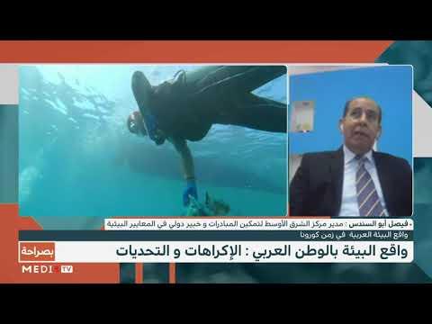 المشاكل البيئية بالوطن العربي