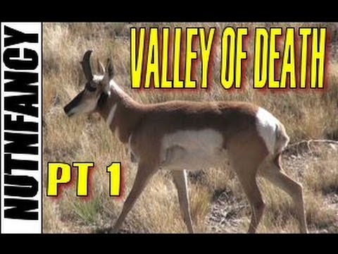 """Valley Of Death"" Run N Gun Pt 1 by Nutnfancy"