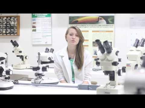 Ciências Biológicas é na Faculdade Guairacá