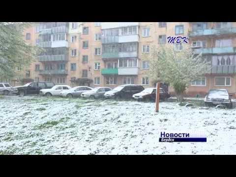 Самый снежный майский день в Бердске