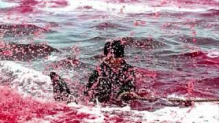 Mengerikan, Lautan Ini Merah Darah Setelah Terjadi Pembantaian
