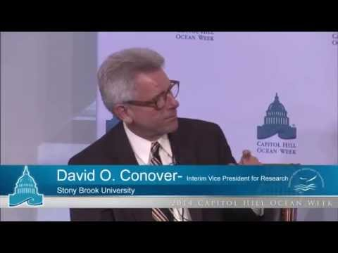 CHOW 2014 - State of the Ocean