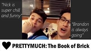PRETTYMUCH Chronicles #9: The Book of Brick (Brandon & Nick)