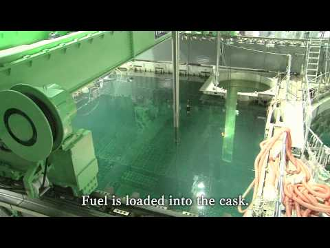 Removal of nuclear fuel assemblies from Fukushima Daiichi nuclear power plant