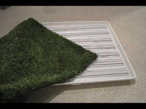 How To Make An Indoor Outdoor Pet Bathroom Starring