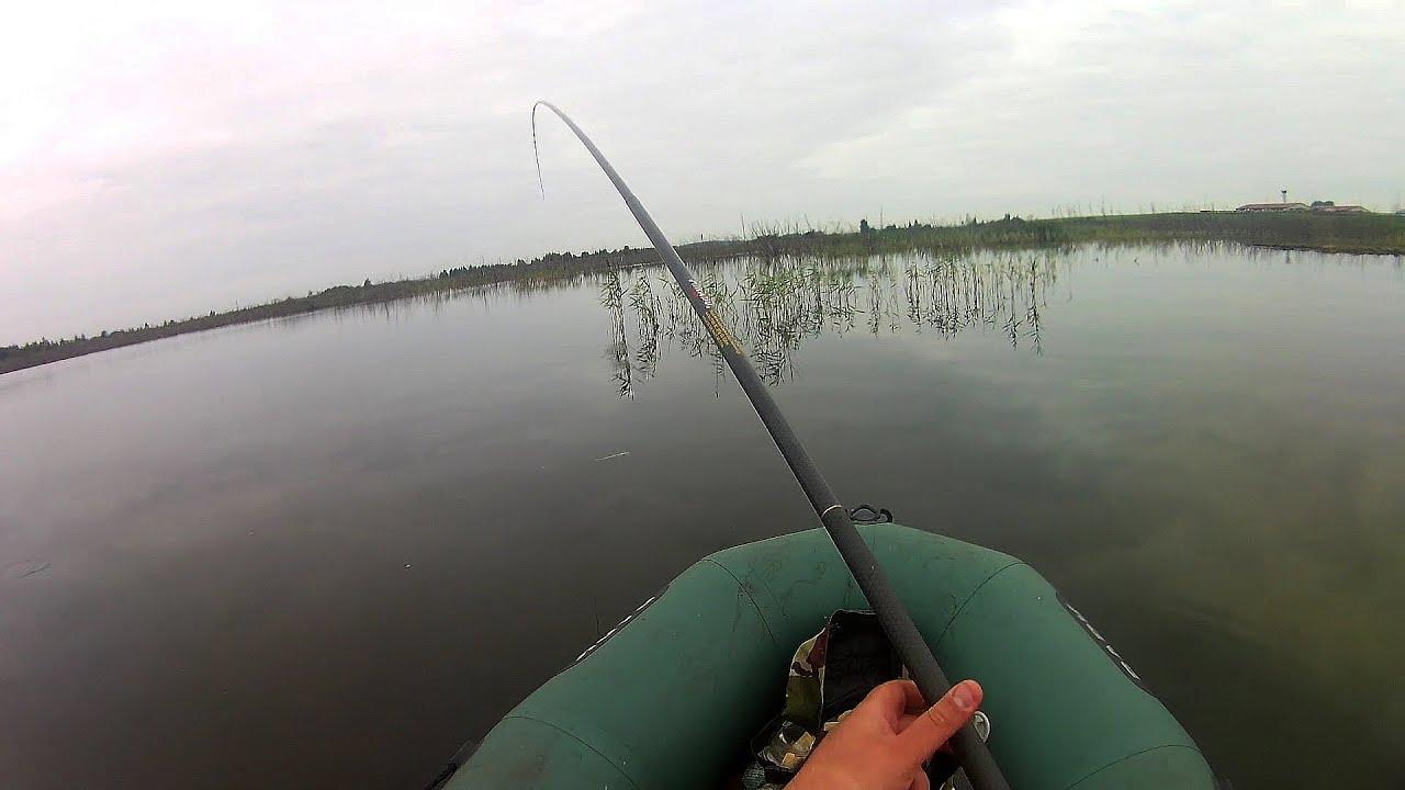 бесплатно рыбалка на карася