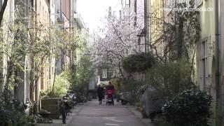 Amsterdam, Citywalk