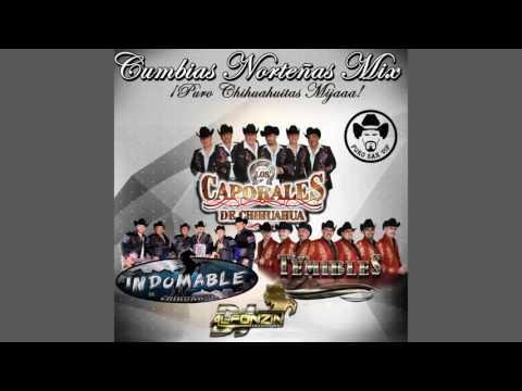 Cumbias Norteñas Mix 2016 | Puro Chihuahuitas Mijaaa ► DjAlfonzin