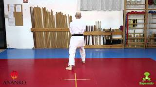 Pinan Nidan - Karate-do
