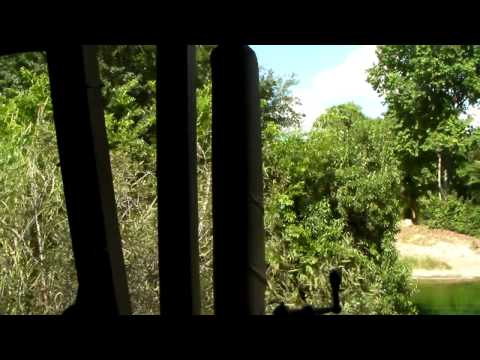 Walt Disney World Animal Kingdom Kilimanjaro Safaris