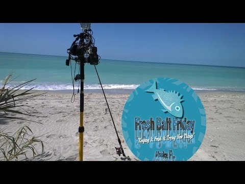 FBF (Eps 12) Sarasota County Beach Patrol & Little Greenie's visit to Nokomis Beach Bait & Tackle