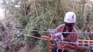 Zip Lining In Trinidad Macqueripe