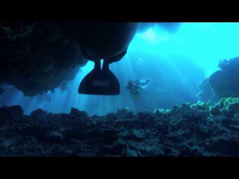 Die Bucht The Cove Oscar 2010 Dokumentarfilm