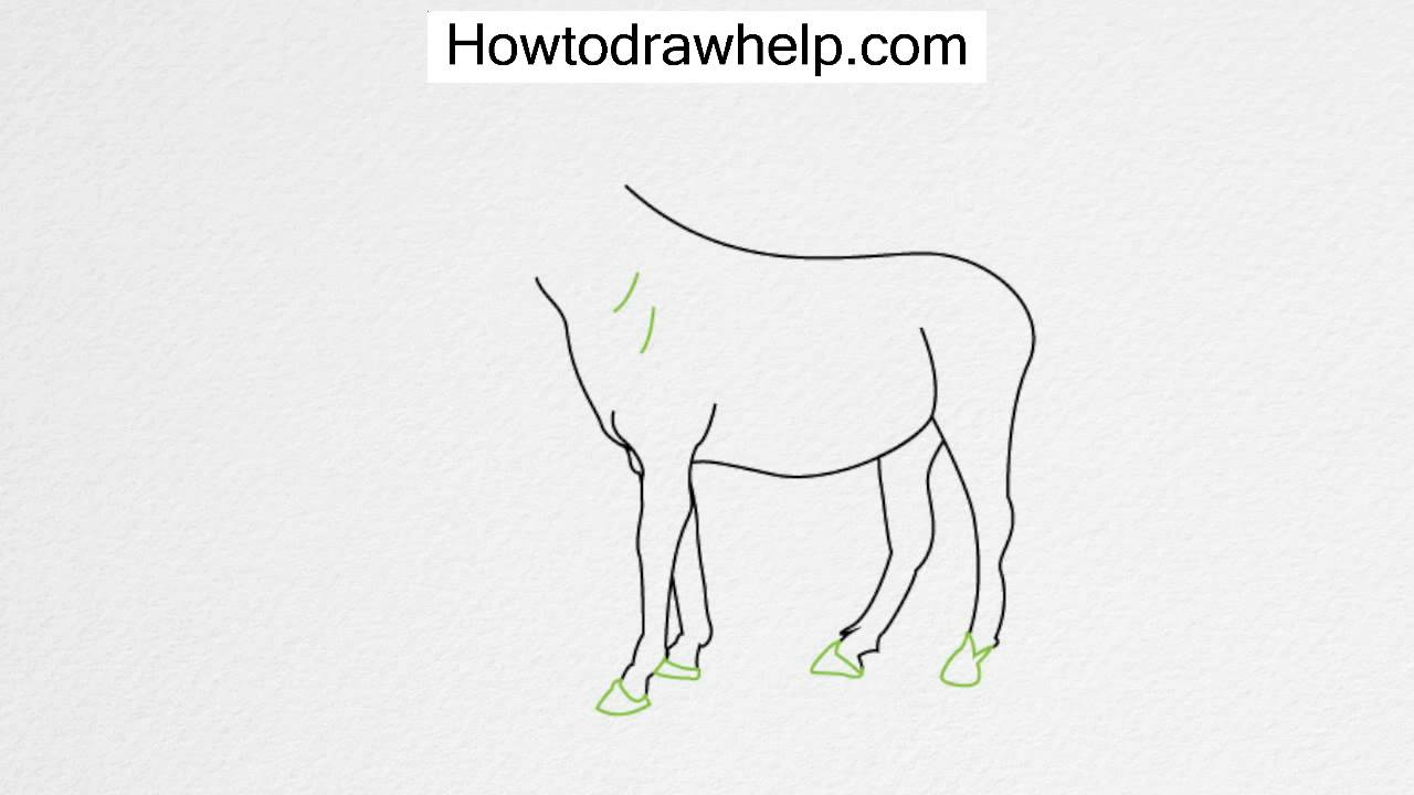 How to draw a HORSE step by step for kids - YouTube