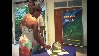 JAMAICA BY AIR _for Web.mov