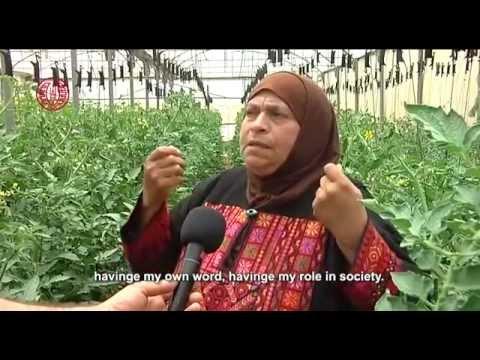 الزراعة العضوية تشكل 10% فقط من الزراعة في فلسطين