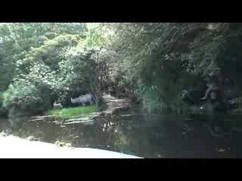Hình ảnh trong video 奈良ドリームランド ジャングル
