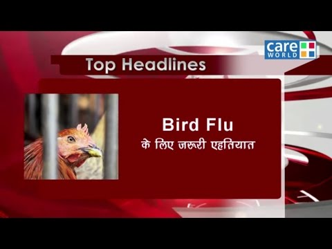 Symptoms and Treatment of Bird Flu - Health Update