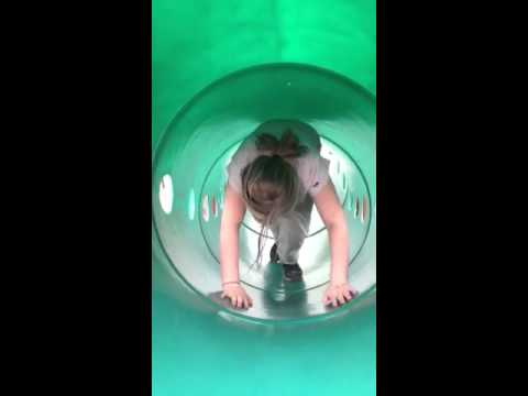 Lily climbing up a green tube