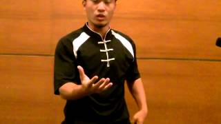What Is Hung Gar Kung Fu & Its Functional Principles