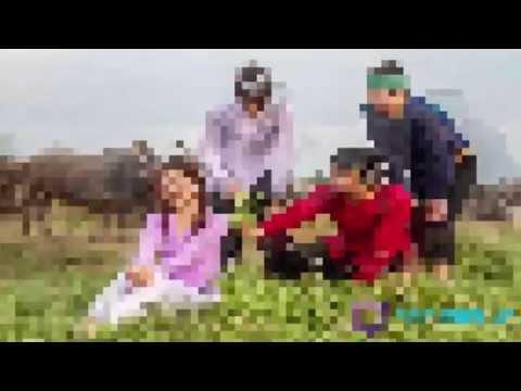 Đứt Từng Đoạn Ruột - Lương Bích Hữu || Nhạc Trữ Tình 2015