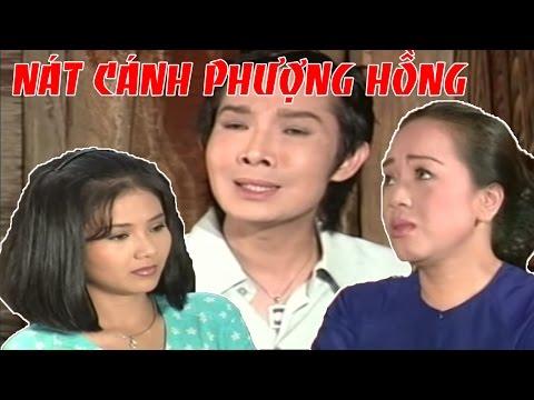 CẢI LƯƠNG VIỆT | Vũ Linh Thanh Ngân - Nát Cánh Phượng Hồng | Cải Lương Xã Hội