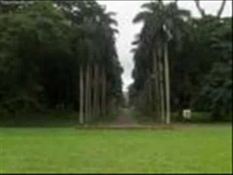 paniniwala