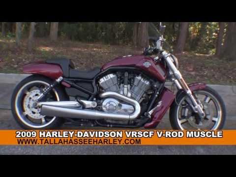 2009 Stock V-rod Muscle Vrscf