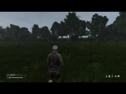 Dayz EOAE RP- Phil Osibin, 2 cows vs 3 zombies. Funny glitch