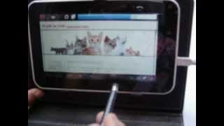 Internet Por Cable En Tablet, Usando Adaptador RJ45