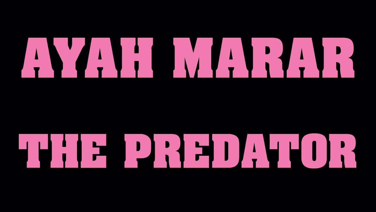 AYAH MARAR 'THE PREDATOR'