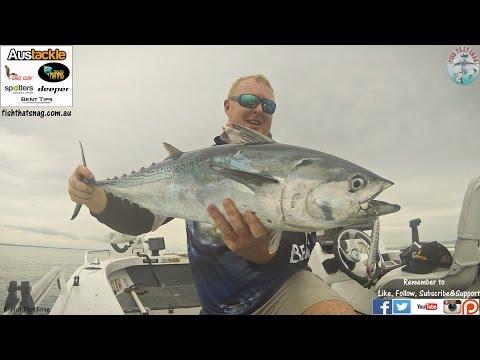 Fish That Snag - Platypus Bay Tuna for Miles