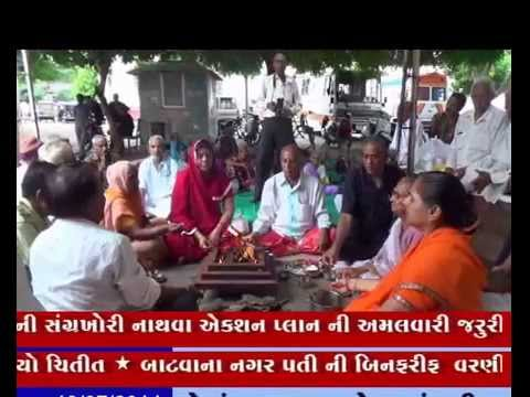 19-07-2014,ivn24news,hanuman,bajarang,voting,election,lion,sasangir,park