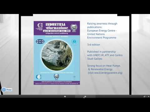 EEC presents at the intergovernmental IRENA (IRELP) Webinar - Skills Needs in Renewable Sector