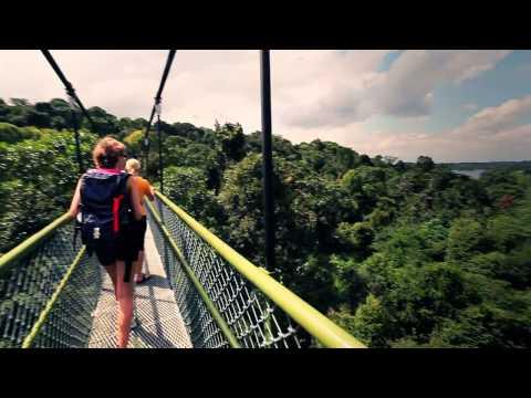 Singapore Tourism Board
