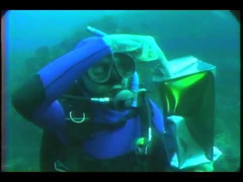 Suyun altında özkütle basınç ilişkisi
