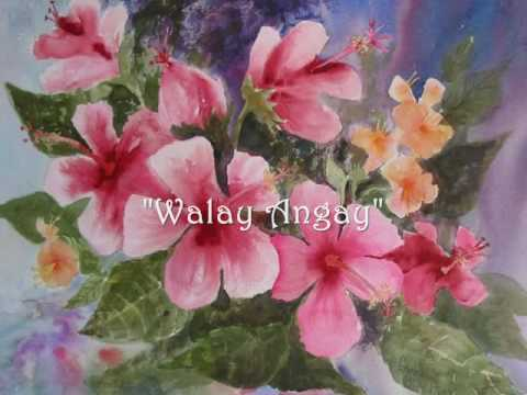 Walay Angay - Traditional Visayan (Ilongo) Song - Juan Silos Jr.