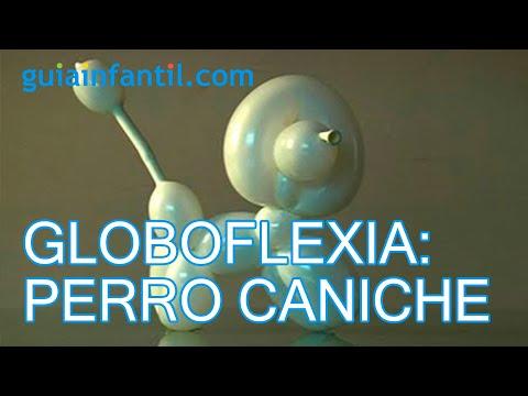 Globoflexia. Cómo hacer un perrito caniche con globos