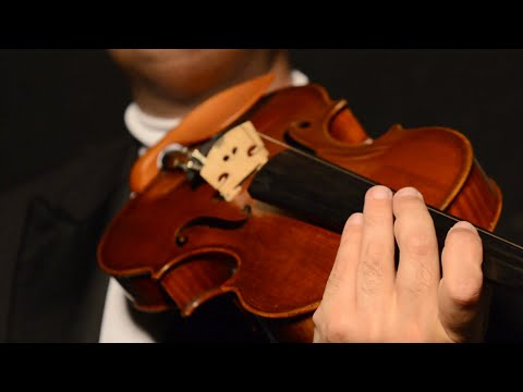 Paganini Moses Fantasy (Variations on the G String) - AntalZalai.com