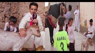 بالفيديو..قصة مثيرة يرويها خيال مغربي يعشق تربية الحيوانات من شيشاوة..عندو معزة سماها حنان |