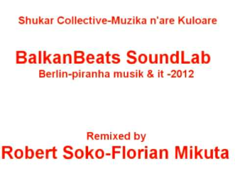 Shukar Collective  Muzika n'are Kuloare remix by Florian Mikuta & Robert Soko