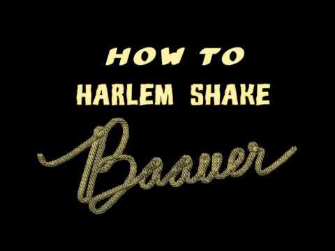 télécharger Baauer – Harlem Shake