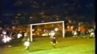 Milésimo Gol De Pelé