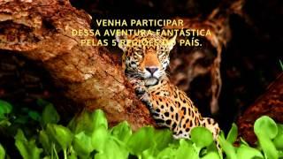 Exposi��o Brasil Selvagem - Ribeir�oShopping